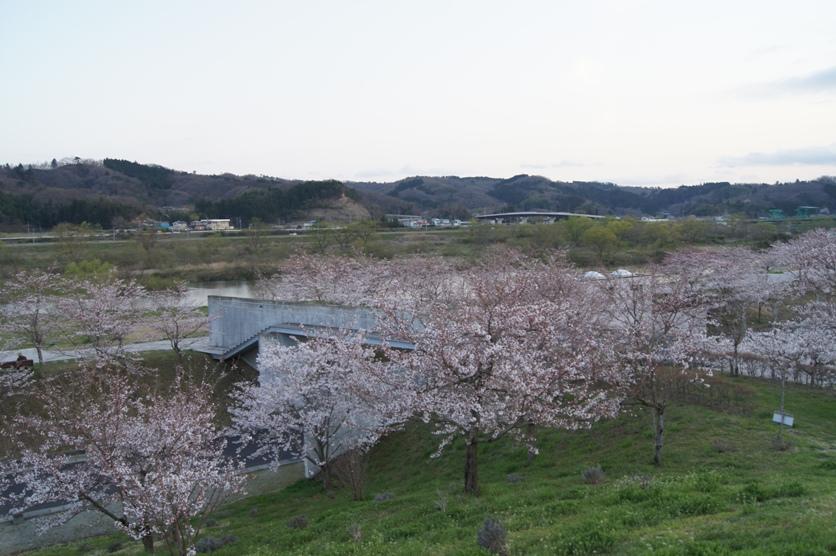 大河原公園.jpg